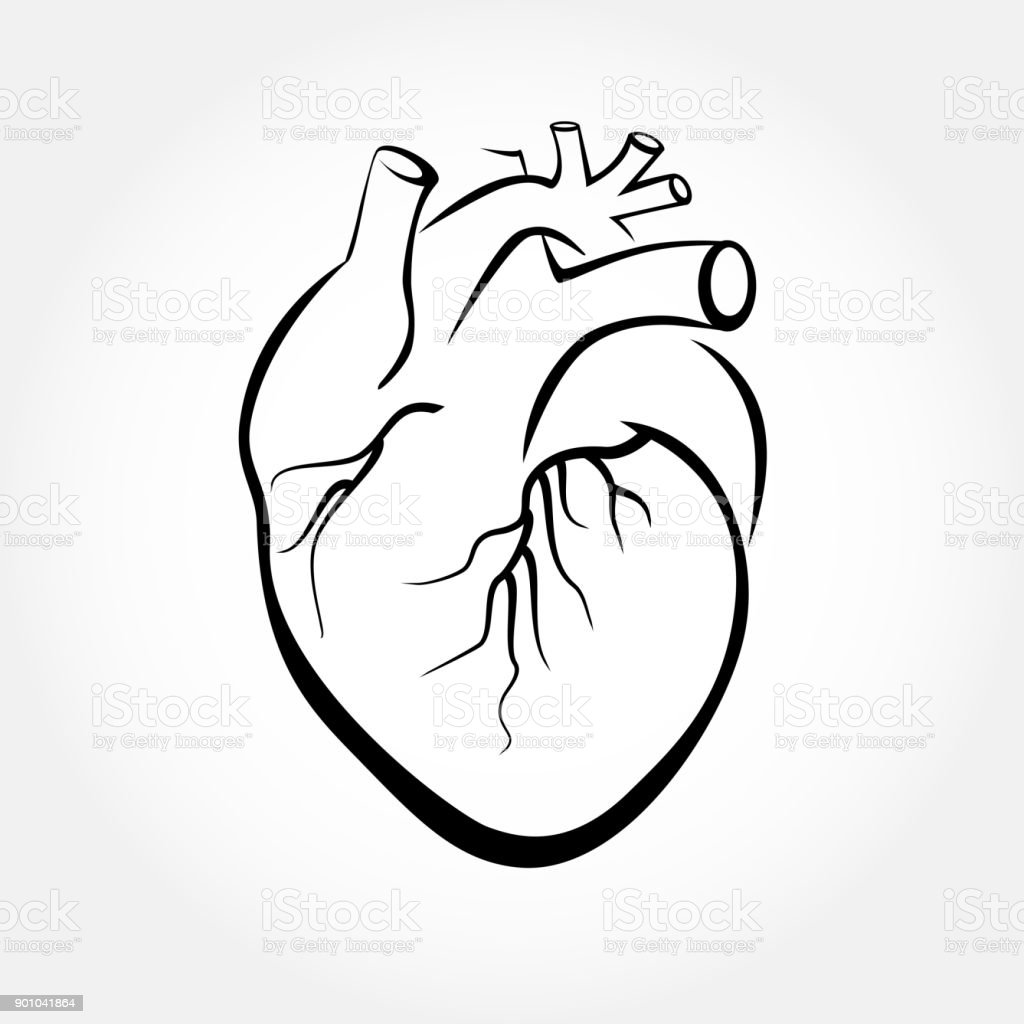 Heart drawings vector. - illustrazione arte vettoriale