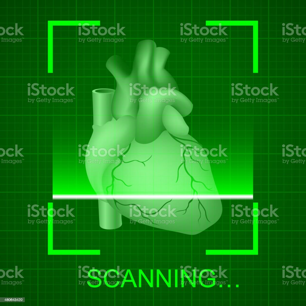 Heart examination vector art illustration