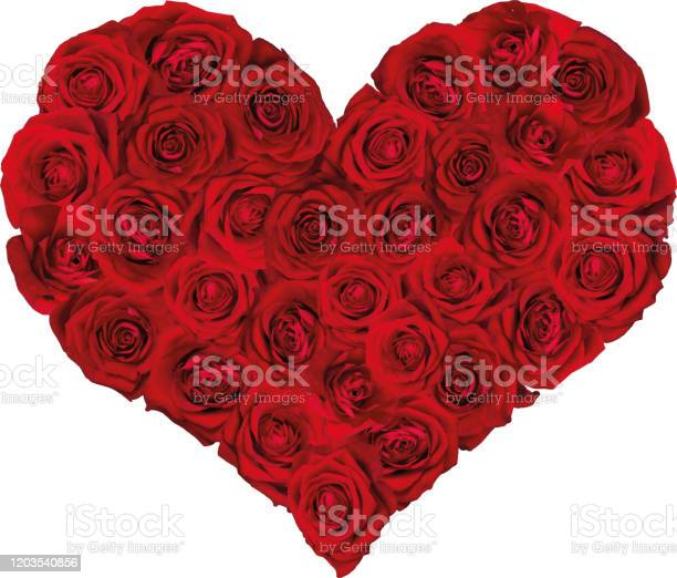 Heart filled with red roses vector vector id1203540856?b=1&k=6&m=1203540856&s=612x612&h=asi ctt82gtckkctpzw9pizm yfrxq0iho1y6btgjdq=