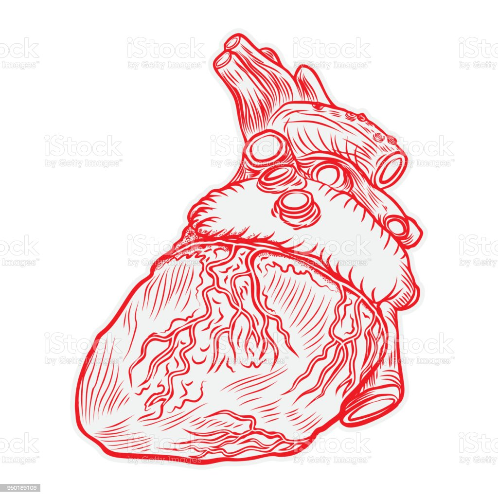 Heart Hand Drawn Isolated On A White Background Hand Drawn ...