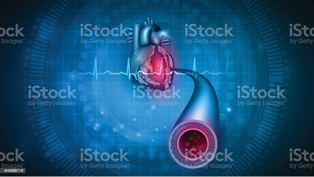 Heart health care vector art illustration