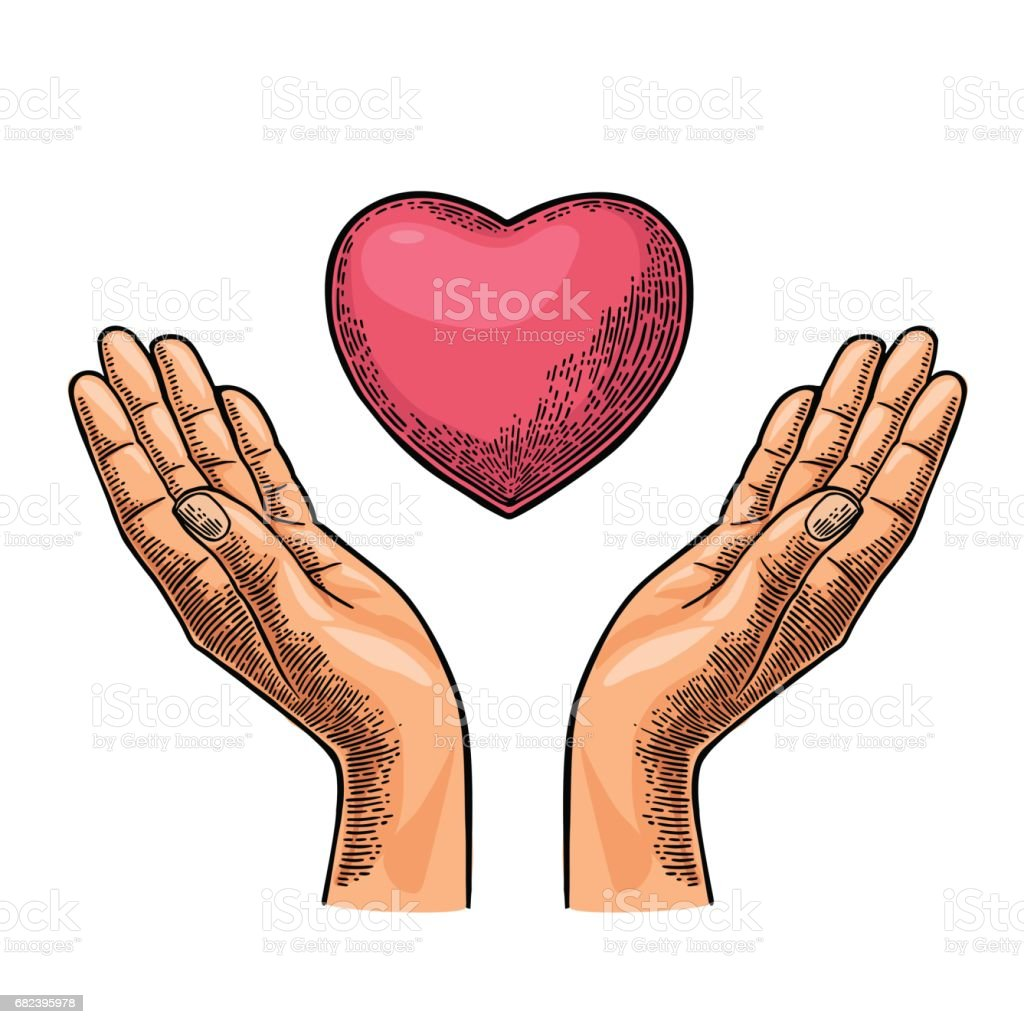 Heart in open female human palms. Vector black vintage engrav heart in open female human palms vector black vintage engrav – cliparts vectoriels et plus d'images de adulte libre de droits