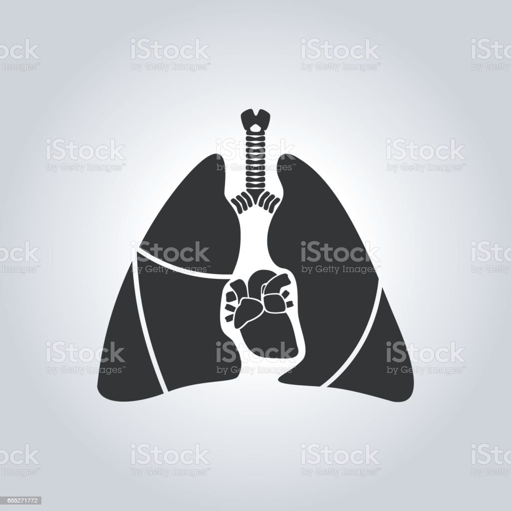Heart & lung symbol vector art illustration