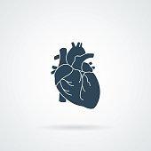 heart organ human isolated icon