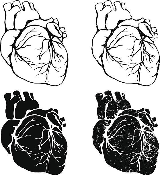 Heart Set vector art illustration