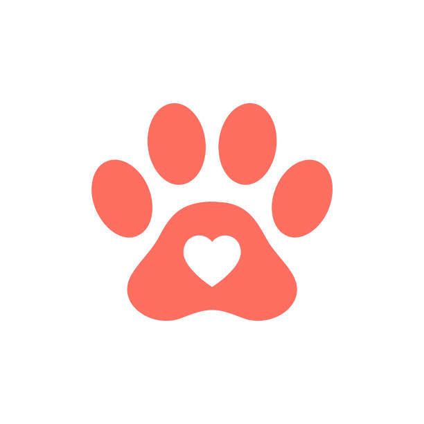 heart shape icon in red pink colored animal paw print. - pets and animals stock illustrations