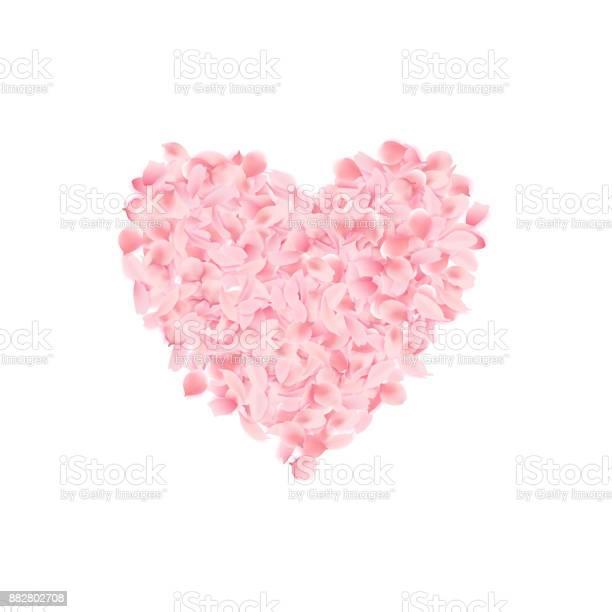 Heart shape made of blooming sakura pink petals vector illustration vector id882802708?b=1&k=6&m=882802708&s=612x612&h=ctnv xnb9hpoloaourlru 24vntaxnnau5 hwkegzoq=