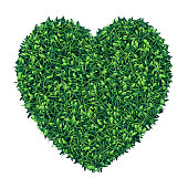 Vector realistic top view illustration of a green grass heart shaped field.