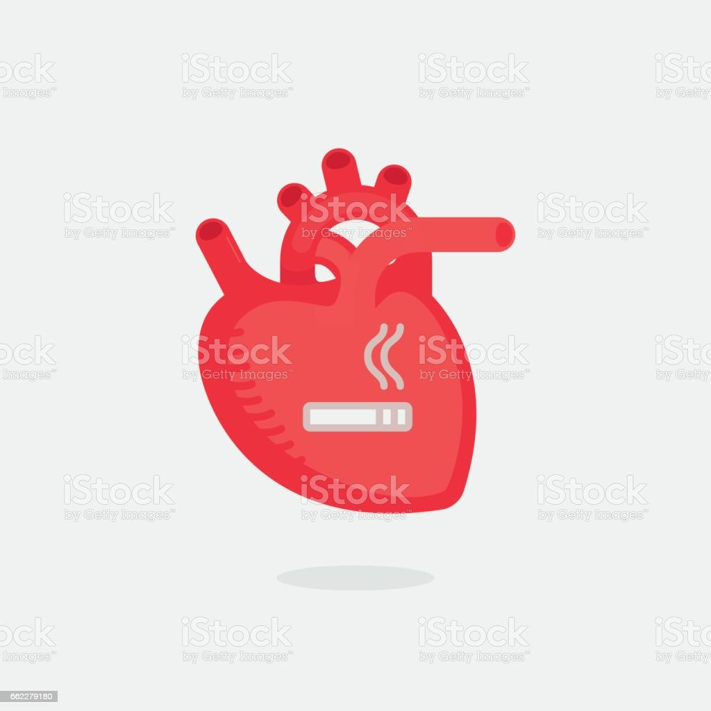 Heart vector illustration royalty-free heart vector illustration stock vector art & more images of anatomy