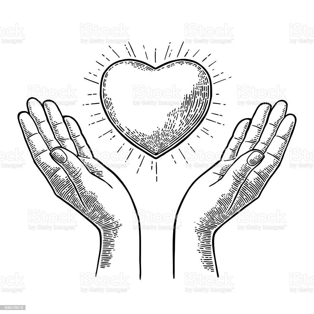 Heart with rays in open female human palms. Vector engrav heart with rays in open female human palms vector engrav - immagini vettoriali stock e altre immagini di accudire royalty-free