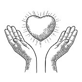 Heart with rays in open female human palms. Vector engrav