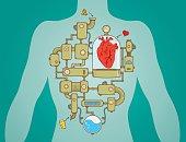 Heart working process scheme as a machine. Eps8.