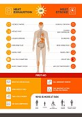 istock Heat exhaustion and heast stroke infographic 1267691087