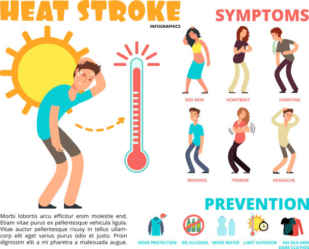Heat stroke and summer sunstroke risk, symptom and prevention vector infographics Heat stroke and summer sunstroke risk, symptom and prevention vector infographics. Sunstroke and infographic heatstroke, symptom and temperature illustration exhaustion stock illustrations