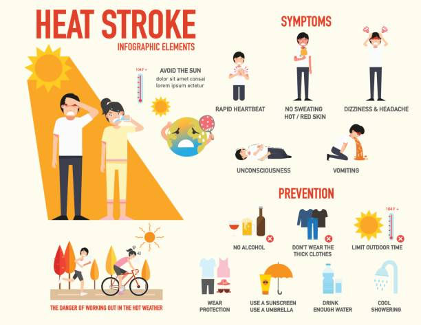 Heat stroke risk sign and symptom and prevention infographic,vector Heat stroke risk sign and symptom and prevention infographic,vector illustration. exhaustion stock illustrations