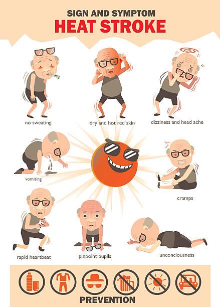Heat stroke  Signs and symptoms info graphics about heat stroke risk sign and symptom and prevention.cartoon vector illustration heat wave stock illustrations