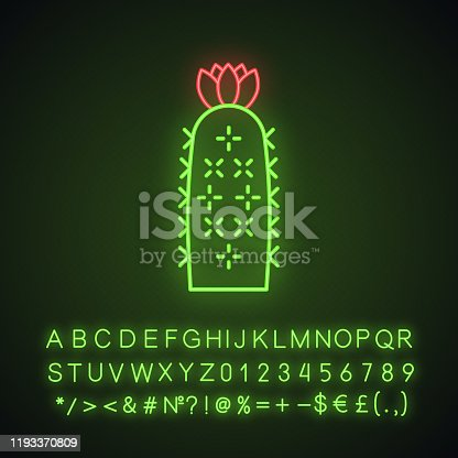 Hedgehog cactus neon light icon. Echinopsis. Sea-urchin cactus. South America native desert plant. Glowing sign with alphabet, numbers and symbols. Vector isolated illustration