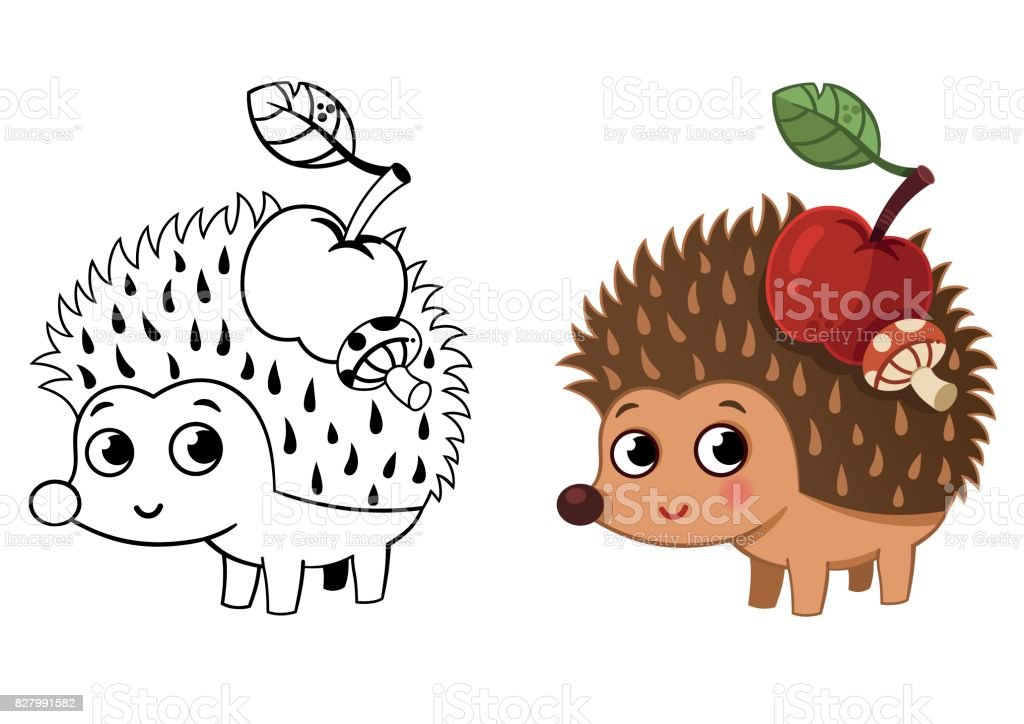 hedgehog coloring page royalty free stock vector art