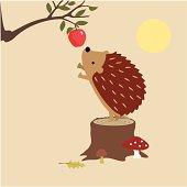 istock Hedgehog Finds An Apple 165680332