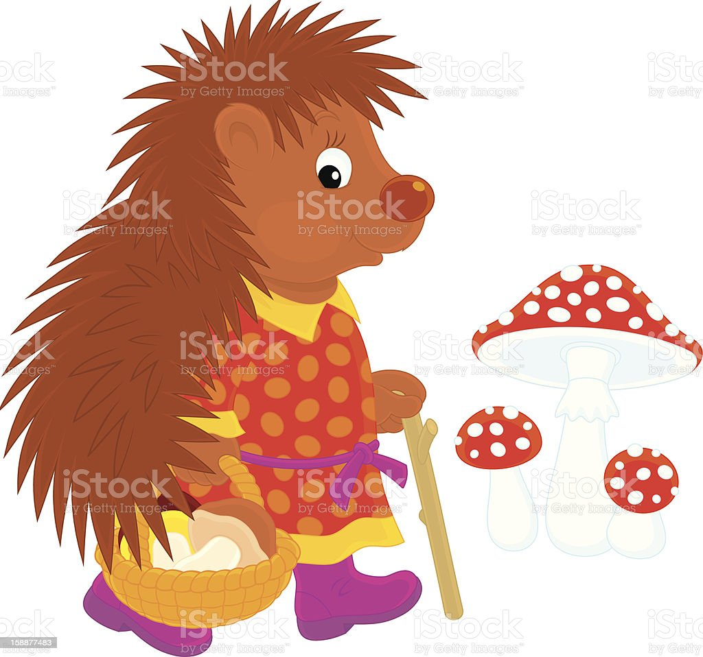 Hedgehog mushroomer vector art illustration