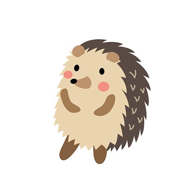hedgehog standing on two legs animal cartoon character vector illustration. - igel stock-grafiken, -clipart, -cartoons und -symbole