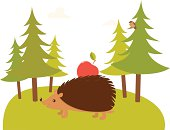 Cute hedgehog with apple on spruce tree forest background.