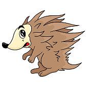 hedgehog with sharp prickly body