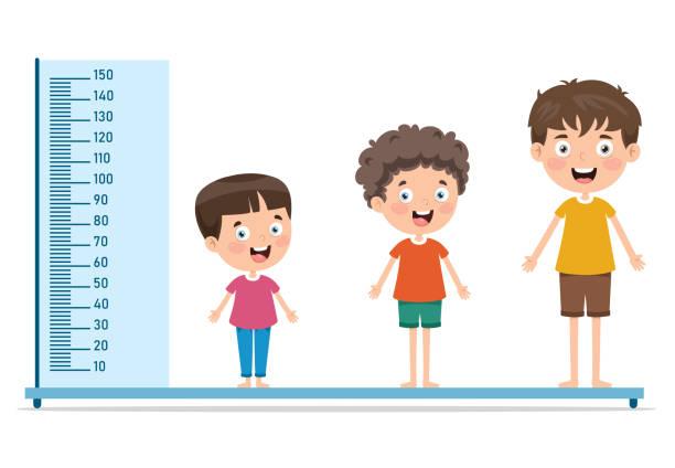 stockillustraties, clipart, cartoons en iconen met hoogtemaat voor kleine kinderen - lang lengte