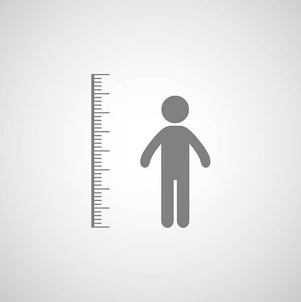 stockillustraties, clipart, cartoons en iconen met height measurement - lang lengte