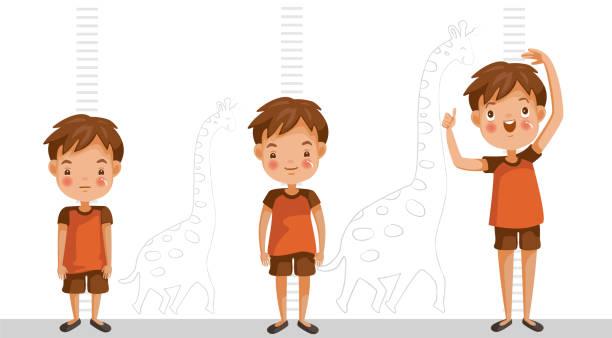 stockillustraties, clipart, cartoons en iconen met hoogte van kind - lang lengte
