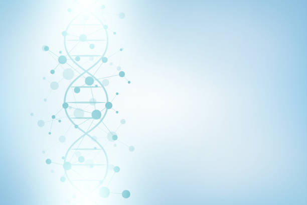 DNA helix and molecular structure DNA helix and molecular structure. Science and technology concept with molecules background biomedical illustration stock illustrations