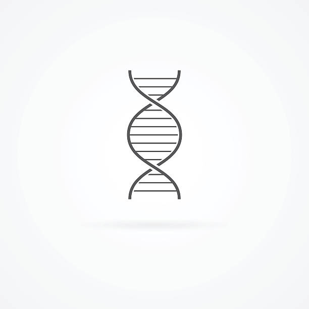 DNA helix icon isolated on white. vector art illustration