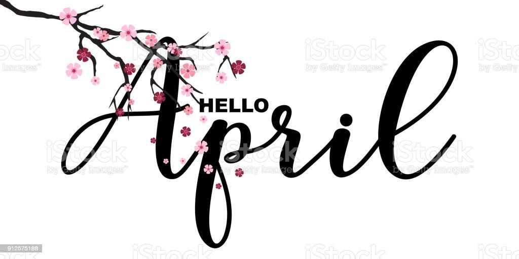 Hello April, spring related motivational quote, isolated on white background, vector illustration. Handwritten letters, Japanese sakura branch, little cute flowers falling. vector art illustration