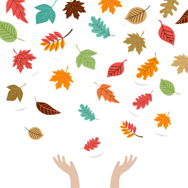 hello autumn, fall season background. hands of child playing with autumn leaves - kids playing in rain stock illustrations, clip art, cartoons, & icons