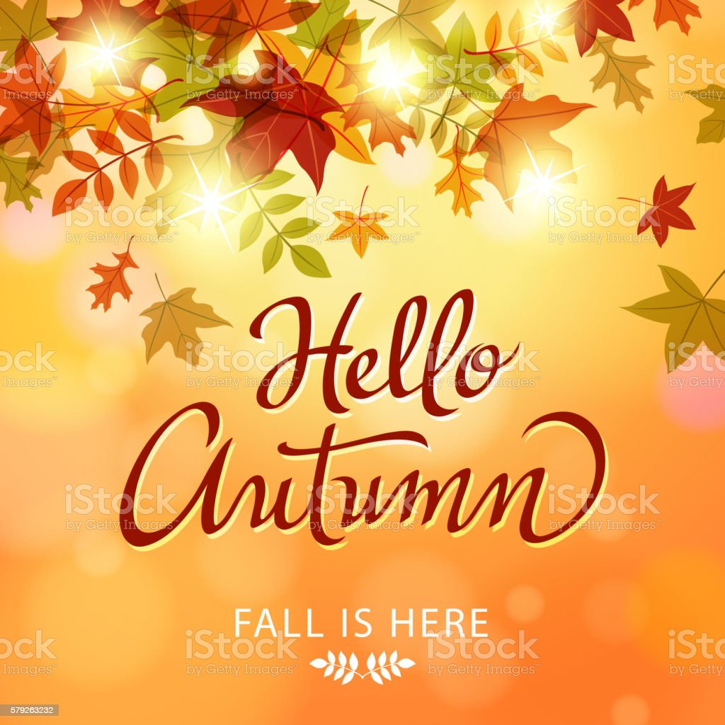 Hello Autumn Leaves vector art illustration