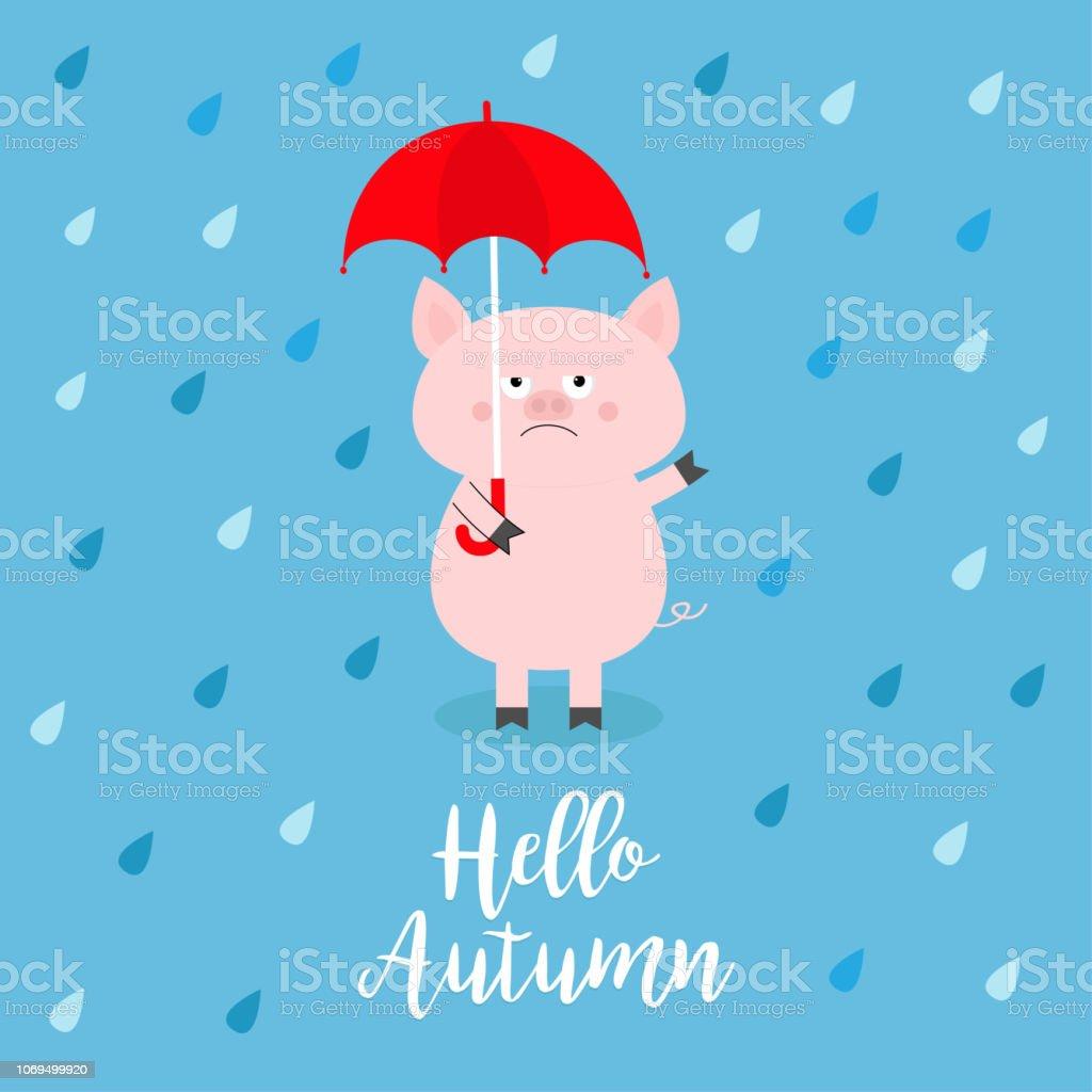 Bonjour Lautomne Cochon Avec Parapluie Rouge Gouttes De