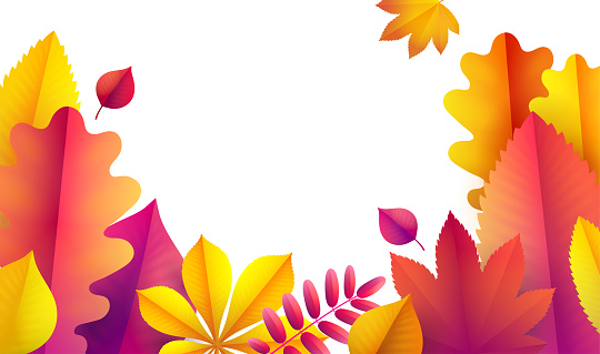 Hello Autumn, sale flyer template for your text. Vector Background of autumn leaves. Promotion