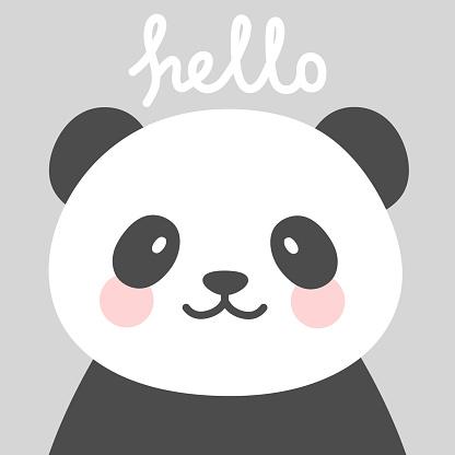 Hello Cute Panda Character Vector Design