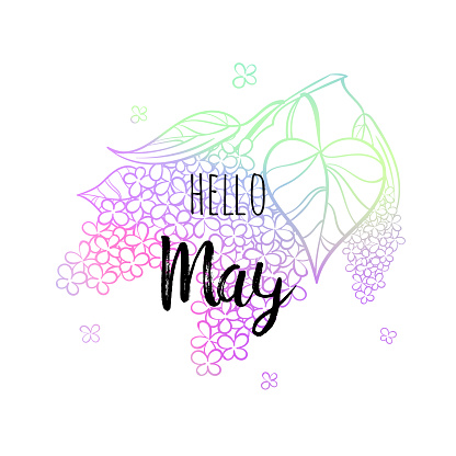Hello May poster with lilac. Motivational print for calendar, glider, invitation cards, brochures, poster, t-shirts.