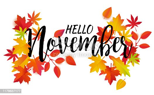 Hello November vector. Autumn leaves and text on white background.