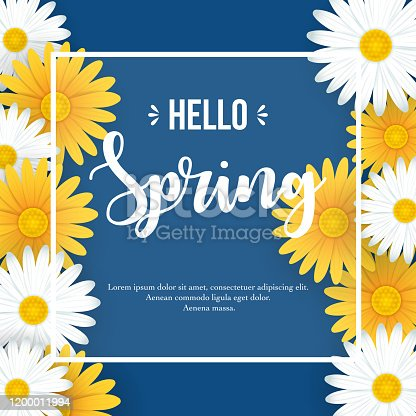 Vector illustration of Hello Spring background with beautiful white and yellow flowers