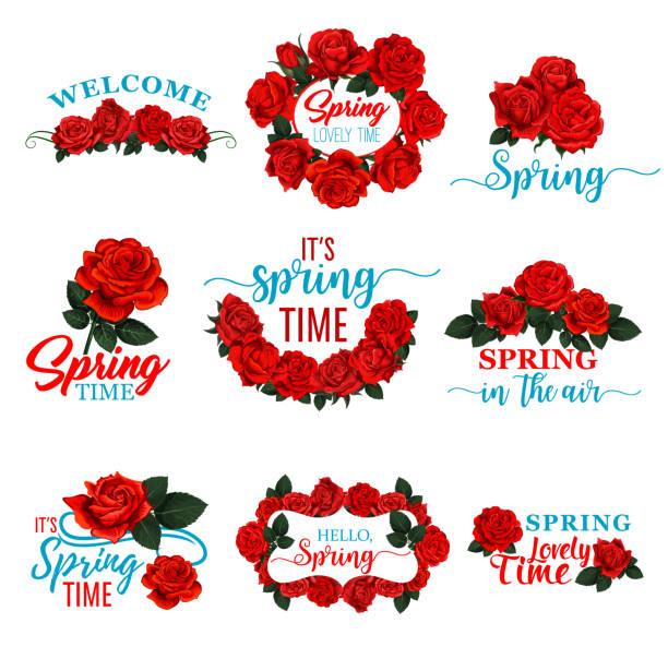illustrazioni stock, clip art, cartoni animati e icone di tendenza di icona della cornice floreale hello spring del fiore di rosa rossa - rosa rossa