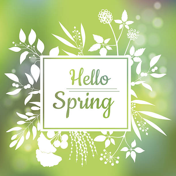 Hello Spring green card design with a textured abstract background – Vektorgrafik