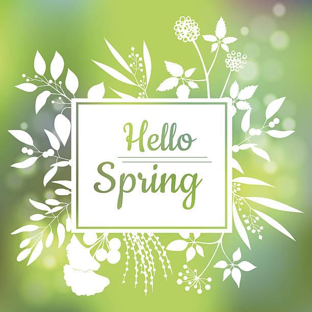 ilustraciones, imágenes clip art, dibujos animados e iconos de stock de hello spring green card design with a textured abstract background - primavera