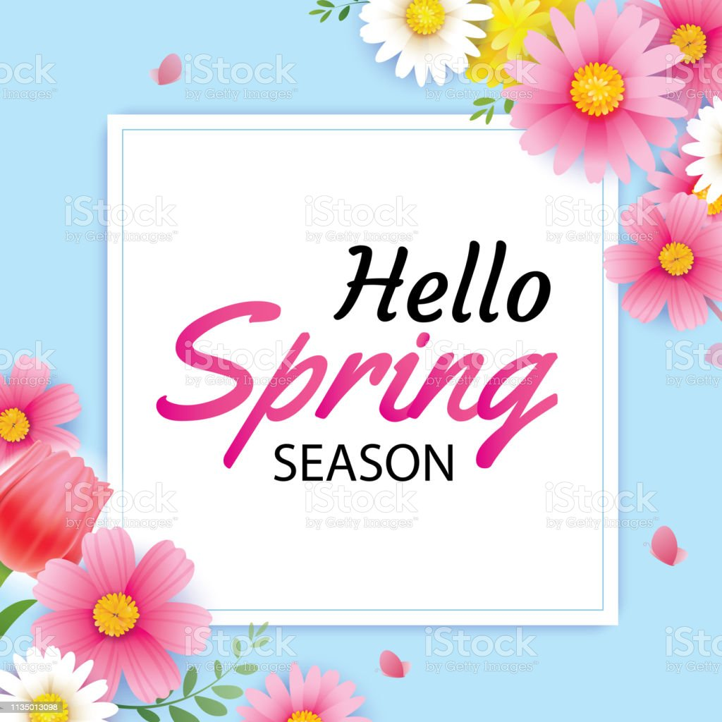 Hello Spring Greeting Card And Invitation With Blooming Flowers