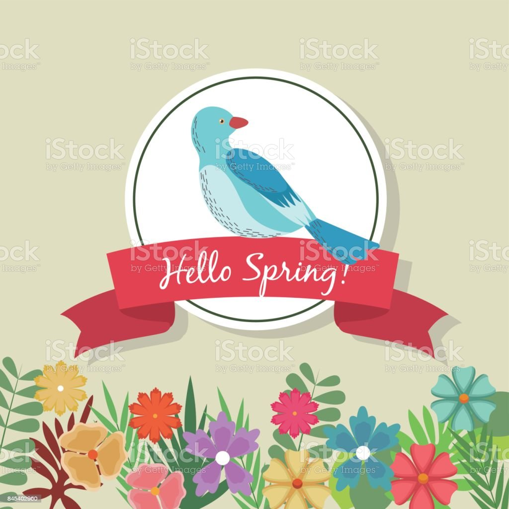 Hello Spring Greeting Card Blue Bird Flowers Ribbon Celebration