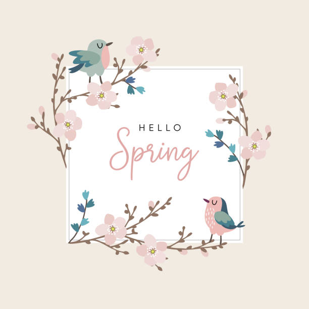 Hello spring greeting card, invitation with cute hand drawn birds and cherry tree branches with pink blossoms. Easter concept. Vector illustration background Hello spring greeting card, invitation with cute hand drawn birds and cherry tree branches with pink blossoms, Easter concept. Vector illustration background. bird borders stock illustrations