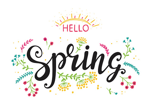 Hello Spring. Hand drawn lettering poster with flowers and sun. Invitation or greeting card with Wildflowers