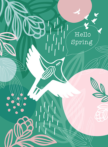 Hello Spring Message White Bird Woman