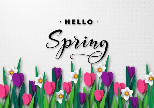 Hello Spring seasonal greeting banner.